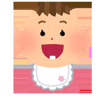 「子どもの歯・口の健康」④【乳歯編】~乳歯の構造・いつまで必要か~